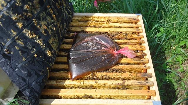 Как правильно закармливать пчел