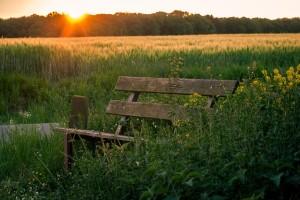 Где отдохнуть на природе: 5 интересных мест, о которых вы не догадывались