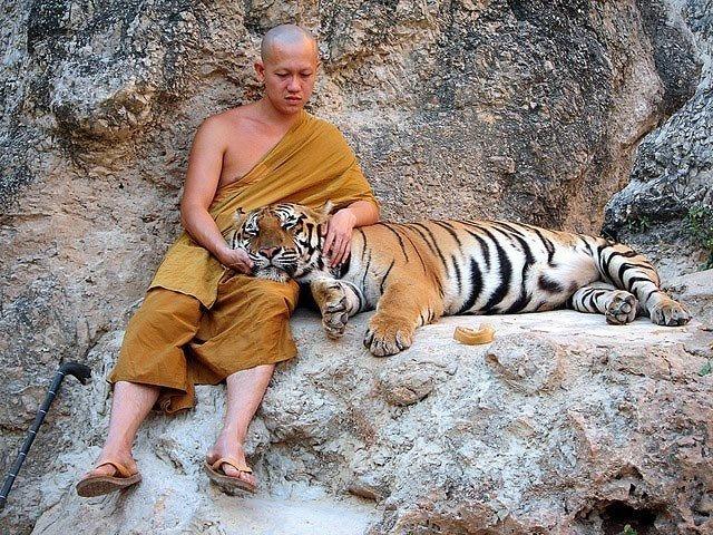 1369916493-hram-tigra_5