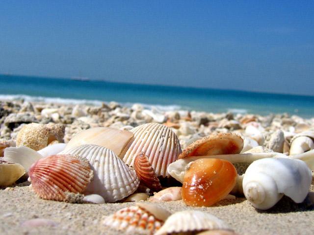10 самых красивых пляжей мира