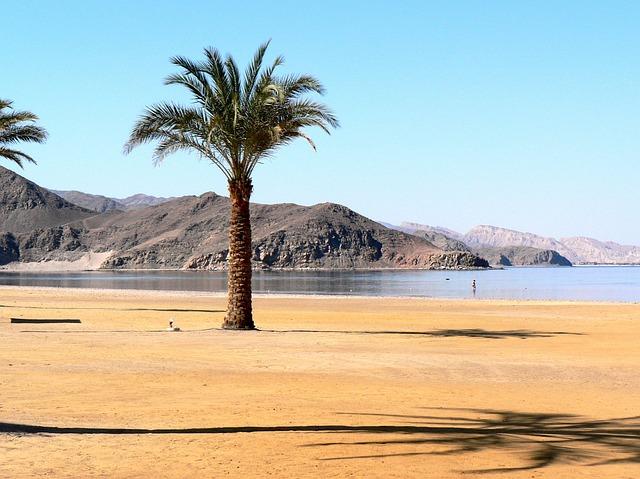 кужа поехать на экскурсии в египте