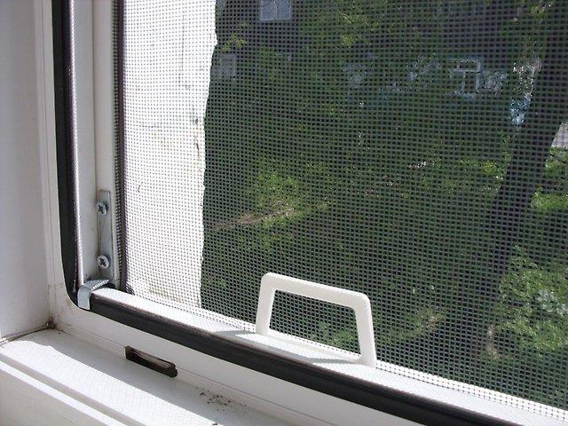как защитить себя от мух