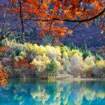 17 Причин Полюбить Осень Раз И Навсегда