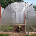 Чем обработать теплицу осенью: полезные советы для каждого огородника и дачника