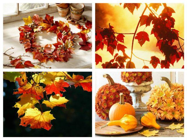 почему люди любят осень