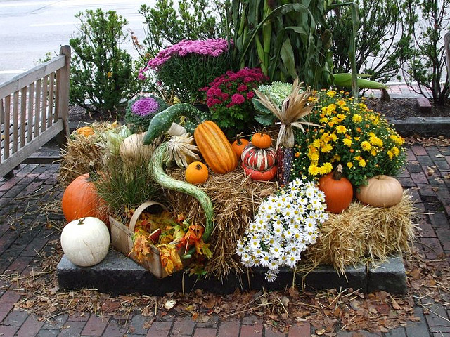 что делать осенью на даче