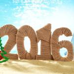 Куда поехать отдыхать на Новый год 2016: дорогие и бюджетные варианты в одной статье