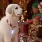 Лучшие новогодние и рождественские фильмы: 50 вариантов, которых вы могли не видеть