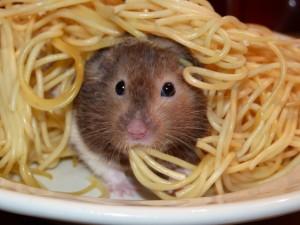 Почему только мы нажираемся на ужин, а весь мир легко перекусывает