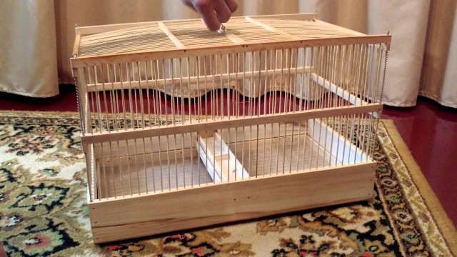как сделать клетку для попугаев своими руками