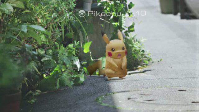 в приложении Pokemon Go