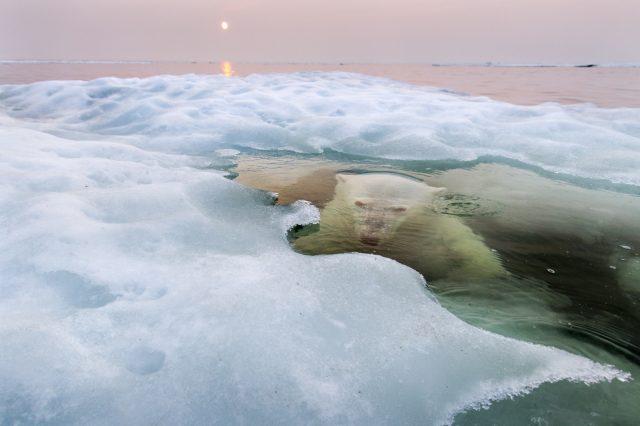 почему вода не замерзает