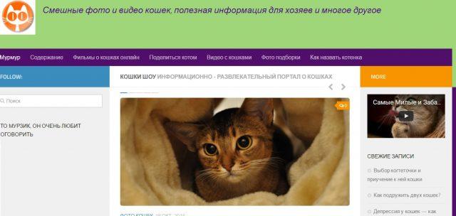 Сайты для кошатников