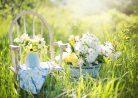 Узнай, какие цветы подарить на 8 марта девушке, маме, подруге в 2016?