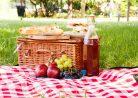 Куда поехать на майские праздники: узнайте варианты для любого кошелька